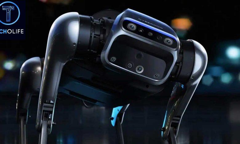 Photo of ربات حیوان خانگی شیائومی